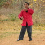 Wasentha's tai chi form 175